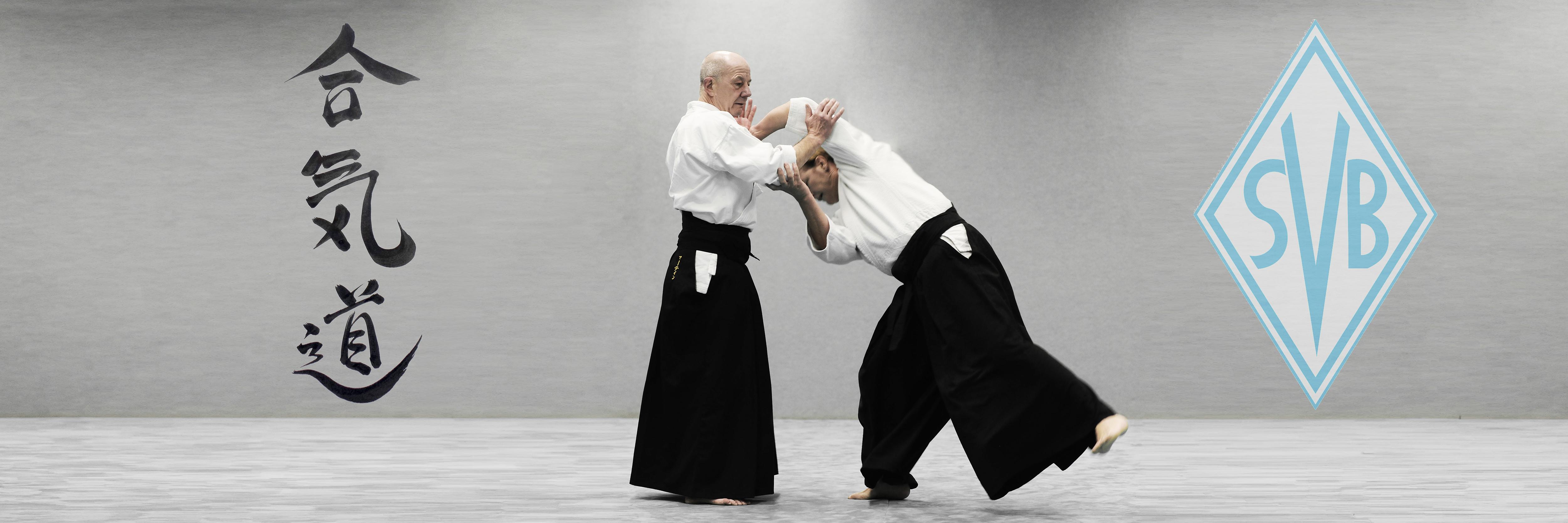 SVB Aikido